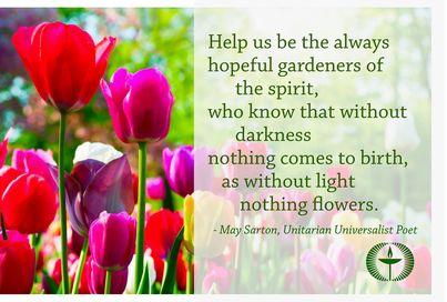 hopeful gardeners 2